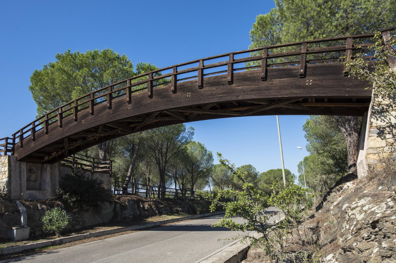 Ponte in legno Edilwood